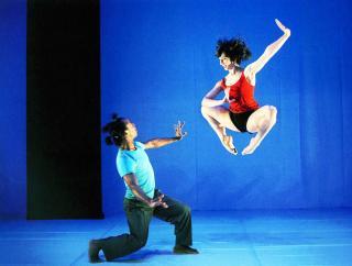 Biennale de danse 8